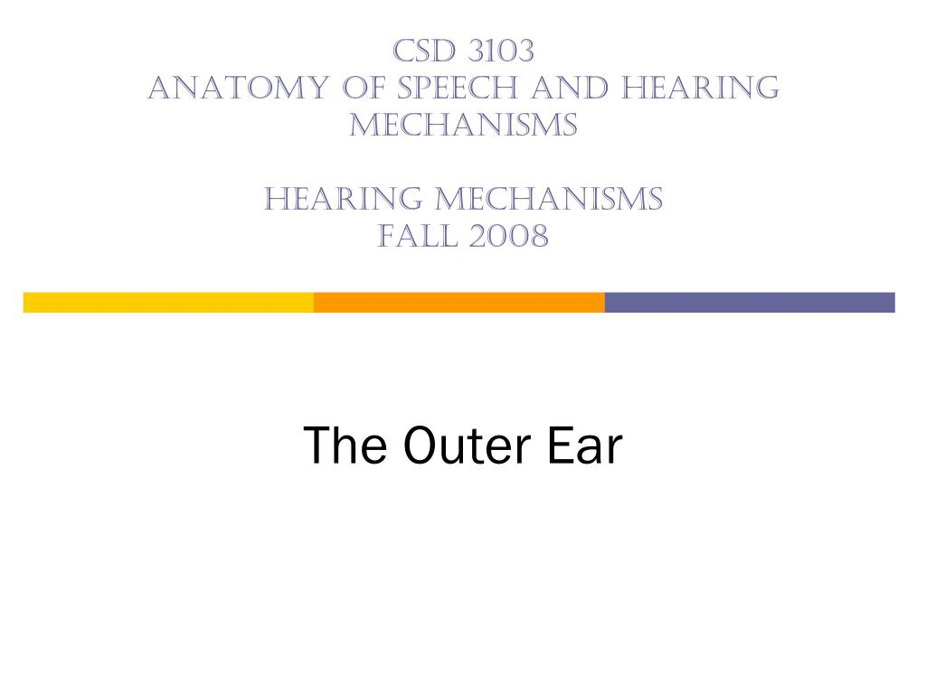 csd 3103 anatomy of speech and hearing mechanisms hearing mechanisms fall 2008 l.