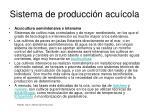 sistema de producci n acu cola6