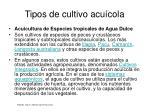 tipos de cultivo acu cola10