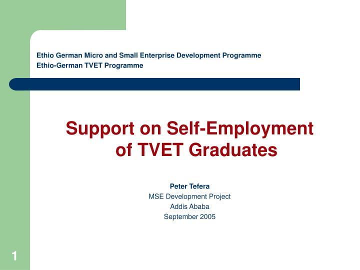 ethio german micro and small enterprise development programme ethio german tvet programme n.