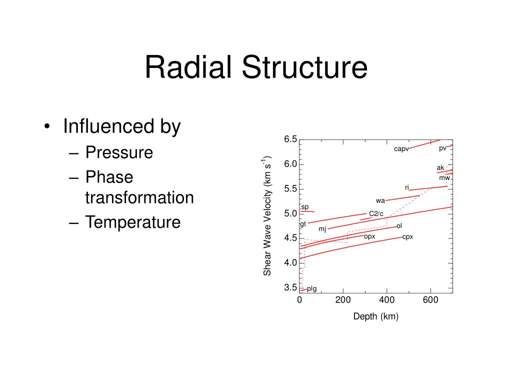 Radial Structure