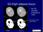 sq thigh adipose tissue