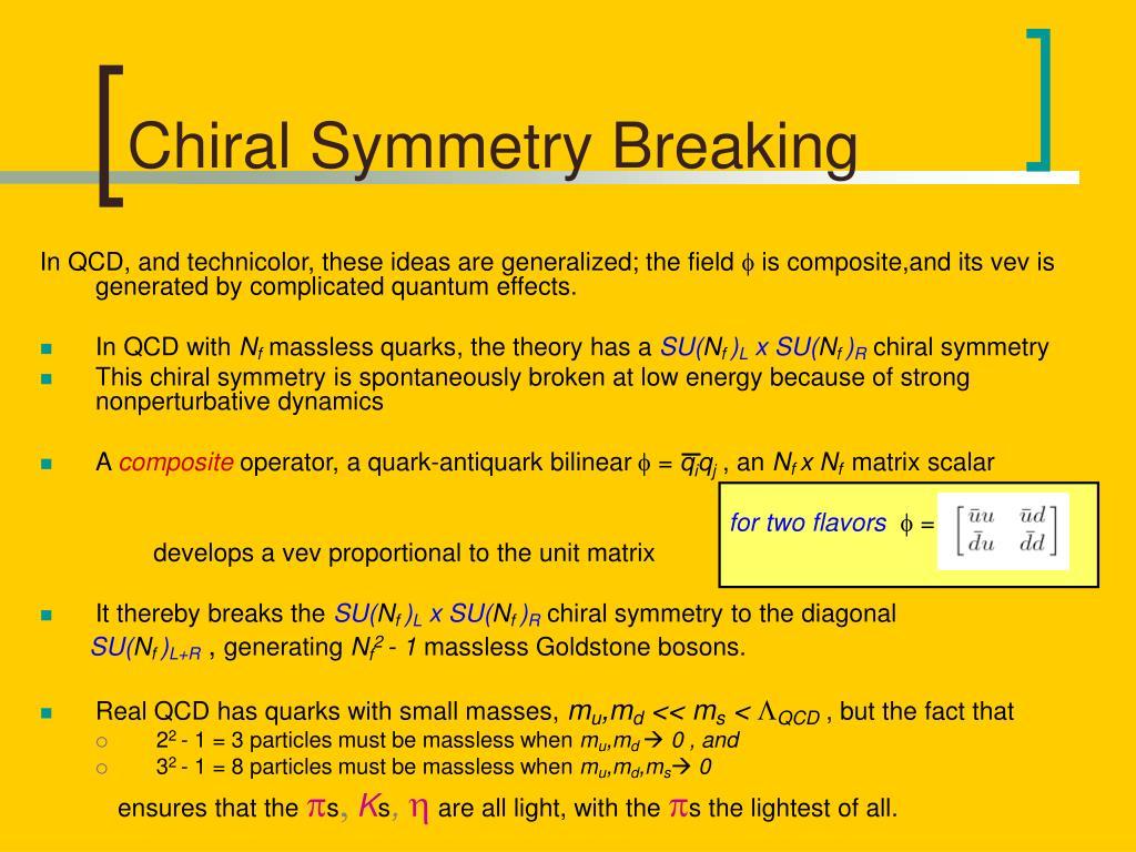 Chiral Symmetry Breaking