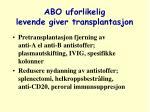 abo uforlikelig levende giver transplantasjon