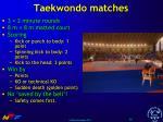 taekwondo matches