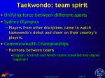 taekwondo team spirit