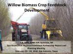 willow biomass crop feedstock development
