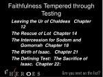 faithfulness tempered through testing