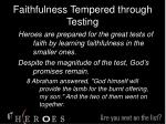 faithfulness tempered through testing18