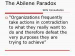 the abilene paradox sos consultants