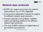 network layer protocols