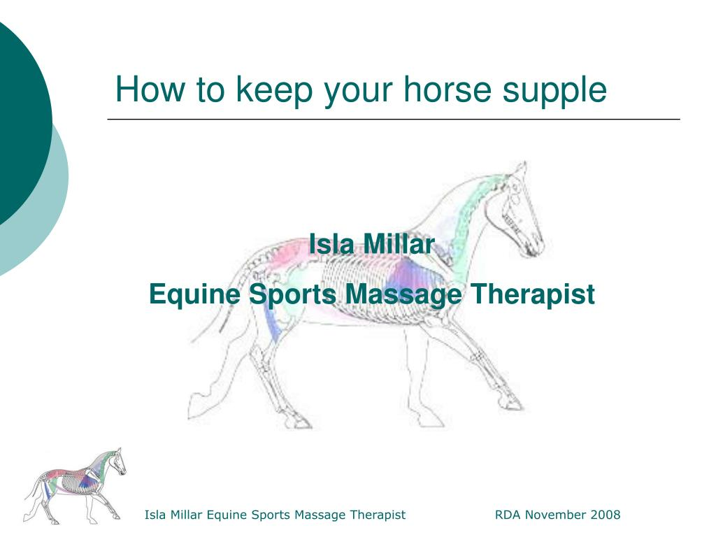 how to keep your horse supple l.