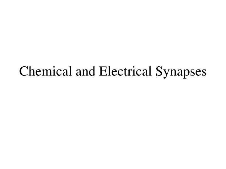 chemical and electrical synapses n.