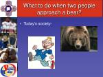 what to do when two people approach a bear