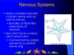 nervous systems3
