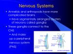 nervous systems5