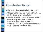 brain structure theories