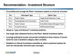 recommendation investment structure