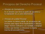 principios del derecho procesal7