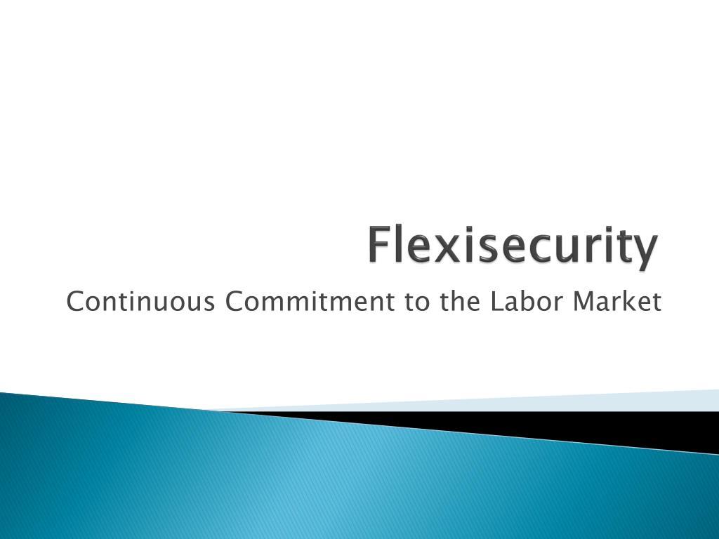 flexisecurity l.