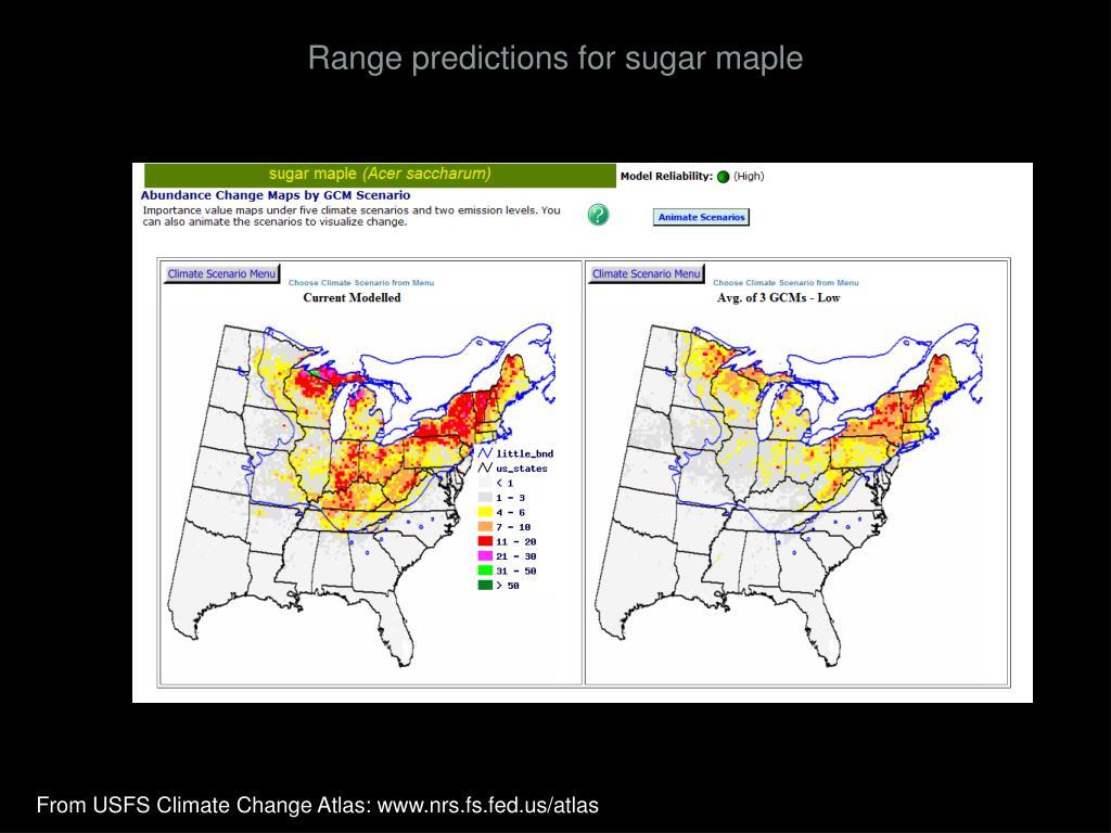 Range predictions for sugar maple