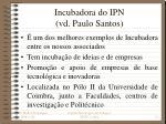 incubadora do ipn vd paulo santos