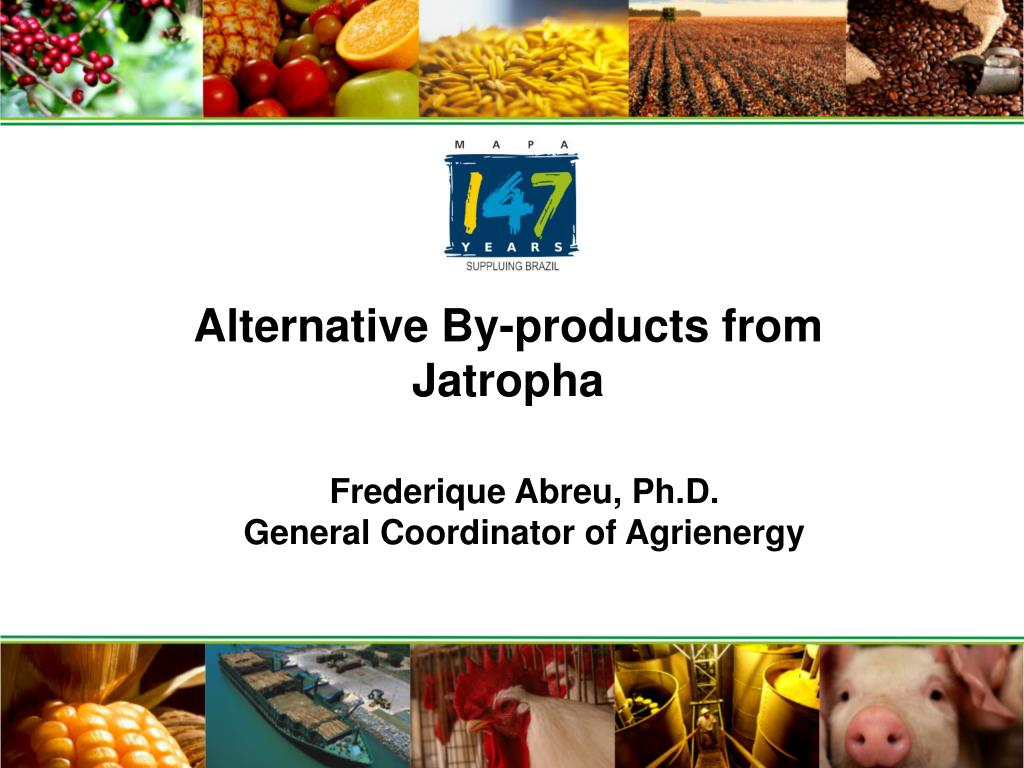 alternative by products from jatropha l.