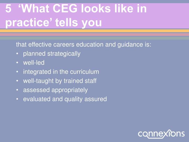 5  'What CEG looks like in practice' tells you