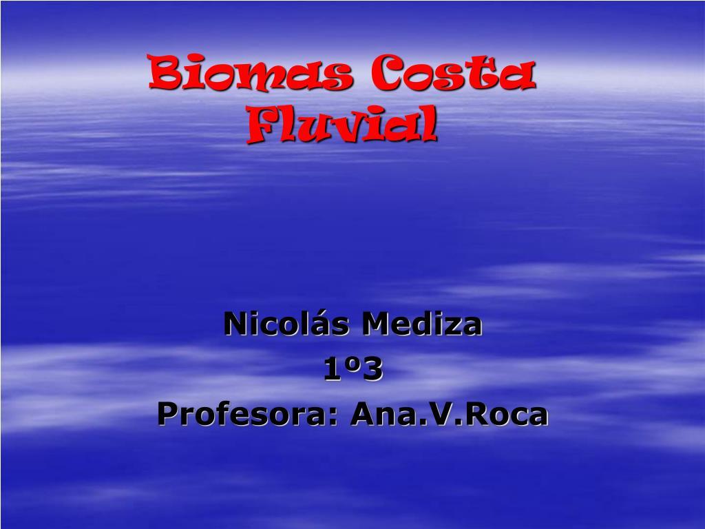 biomas costa fluvial l.