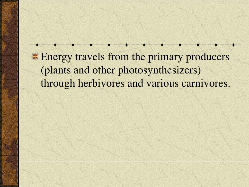 Energy travels from the primary producers (plants and other photosynthesizers) through herbivores and various carnivores.