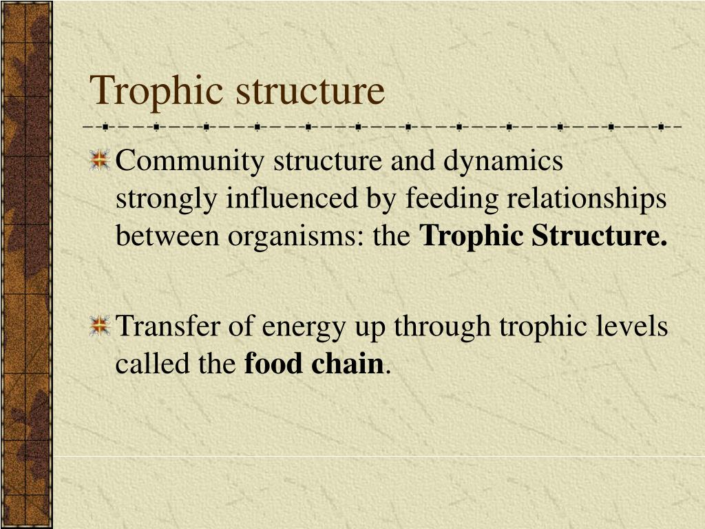 Trophic structure