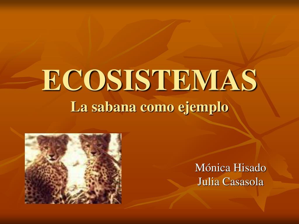 ecosistemas la sabana como ejemplo l.