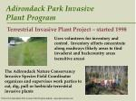adirondack park invasive plant program