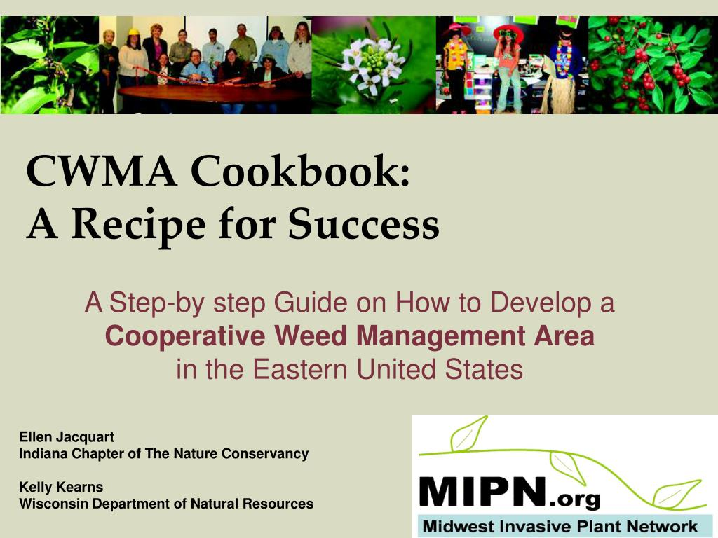 cwma cookbook a recipe for success l.