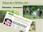 what do cwmas do