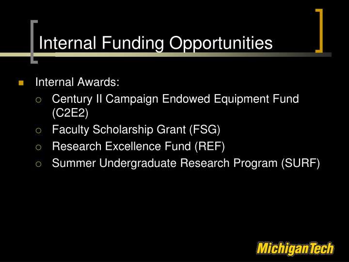 Internal funding opportunities