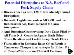 potential disruptions to n a beef and pork supply chain
