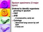 sputum specimens 3 major types