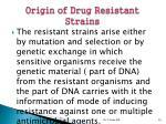 origin of drug resistant strains