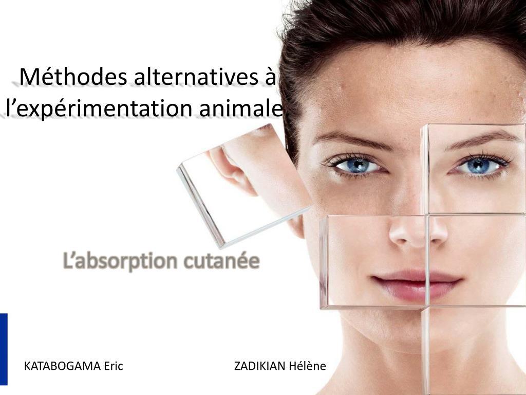 m thodes alternatives l exp rimentation animale l.