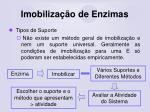 imobiliza o de enzimas42