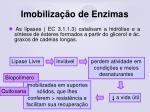 imobiliza o de enzimas78