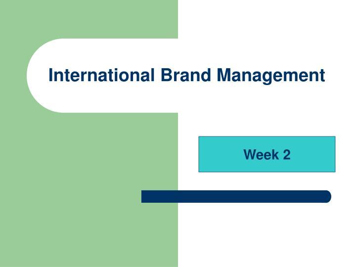 international brand management n.