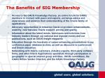 the benefits of sig membership