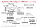 algorithm for investigation of microcytic anaemia