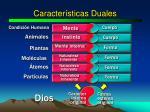 caracter sticas duales