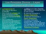 los principios divinos leyes universales divinas