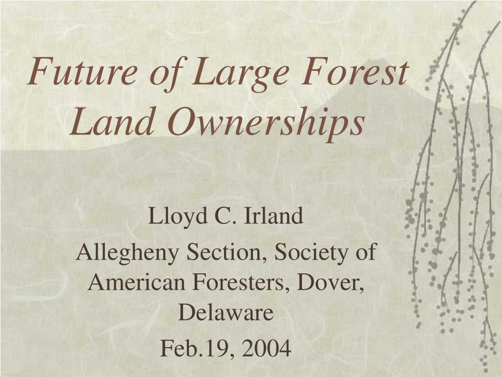 future of large forest land ownerships l.
