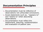 documentation principles13