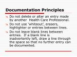documentation principles19